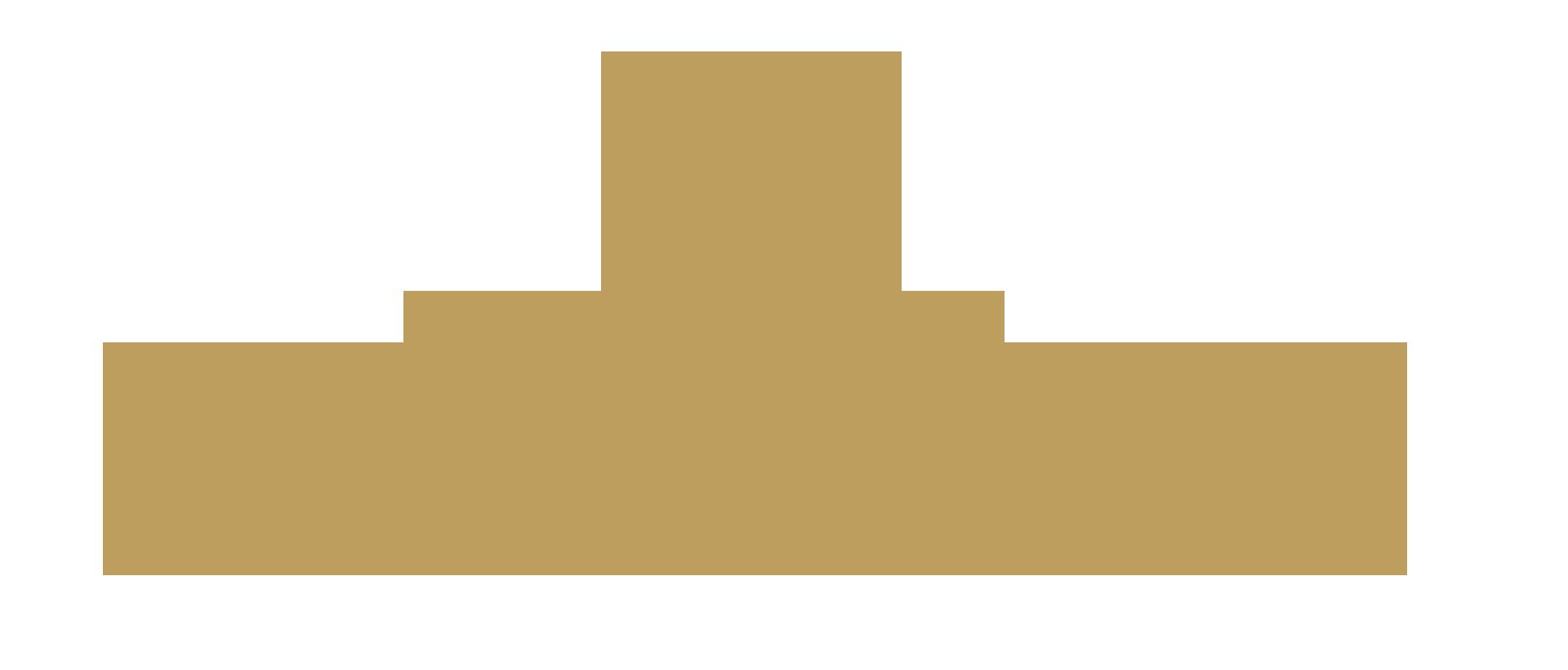 Palladium Chennai